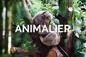 allprotections_clients_animalier